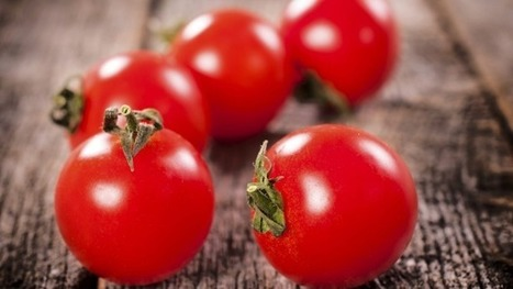 Why Italian tinned tomatoes will soon cost you more   Daily News Reads   Scoop.it