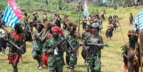 Majalah Selangkah | Situs Berita dan Informasi Tanah Papua - TPNPB-OPM Ancam Tembak Bupati Puncak Jaya | Angin Kurima | Scoop.it