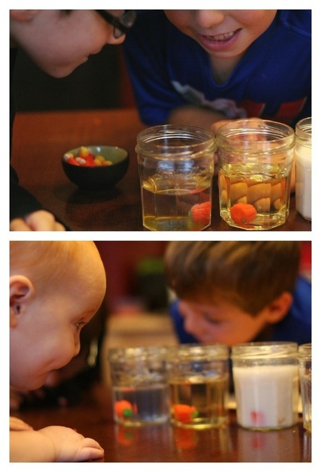 Dissolving Candy Pumpkins | Halloween Science for Kids - Lemon Lime Adventures | Early Childhood Education | Scoop.it