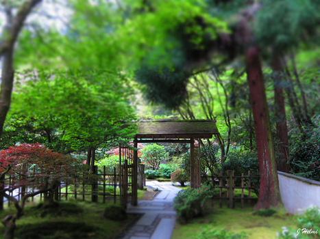 Portland Japanese Garden 4-21-13 24 | Japanese Gardens | Scoop.it