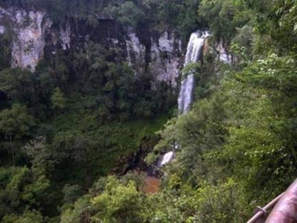 Ecología dispone de un operativo especial en Parques Provinciales ... - Misiones OnLine | Casas Ecológicas | Scoop.it