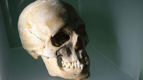 Un squelette neuchâtelois au coeur d'une avancée sur l'origine humaine | Aux origines | Scoop.it