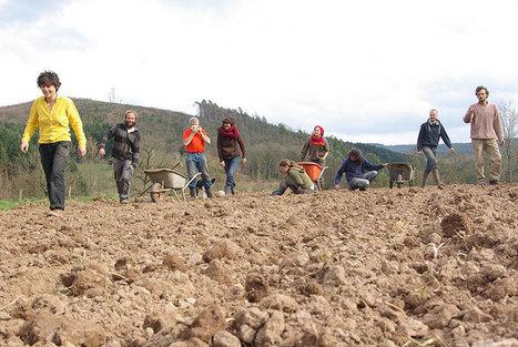 Les Compagnons de la Terre: 30 hectares en transition - Alter Echos | Alimentation21 | Scoop.it