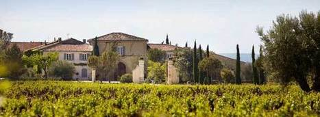 10 Things Every Wine Lover Should Know About... Chateau de Beaucastel | 'Winebanter' | Scoop.it