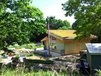 A Year in the Life of a Green Roof   Vertical Farm - Food Factory   Scoop.it
