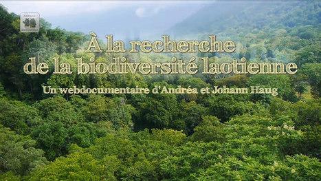 À la recherche de la biodiversité laotienne | Mes passions natures | Scoop.it