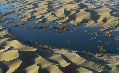 'Carbon sink' detected underneath world's deserts | Conformable Contacts | Scoop.it