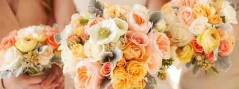 Prom Dresses Boca Raton | Wedding Dresses | Scoop.it
