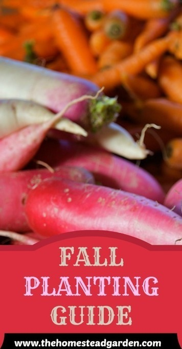 Fall Garden Planting Guide - The Homestead Garden | Garden Ideas by Team Pendley | Scoop.it