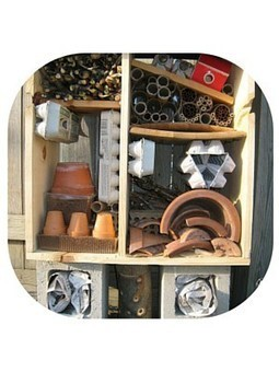 Insect Hotels: The Hidden Worlds in Your Garden | Upcycled Garden Style | Scoop.it