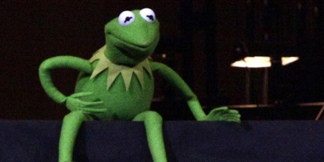 Wise Words From Kermit The Frog | Living and Loving the Joyful Life | Scoop.it