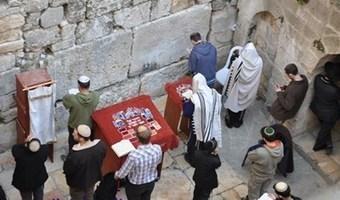 """""""المبكى الصغير"""".. مشروع تهويدي جديد لتطويق المسجد الأقصى   Jerusalem   Scoop.it"""