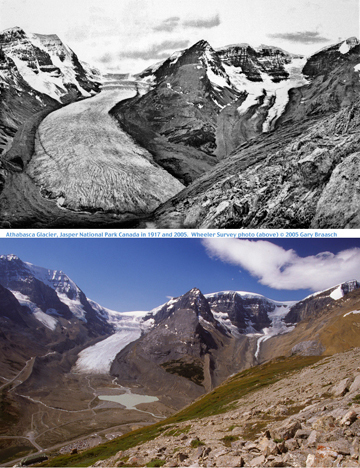 Many Glaciers will Disappear by Middle of Century and add to Rising Sea Levels, experts warn! | Global Warming and Mankind's Folly | Scoop.it