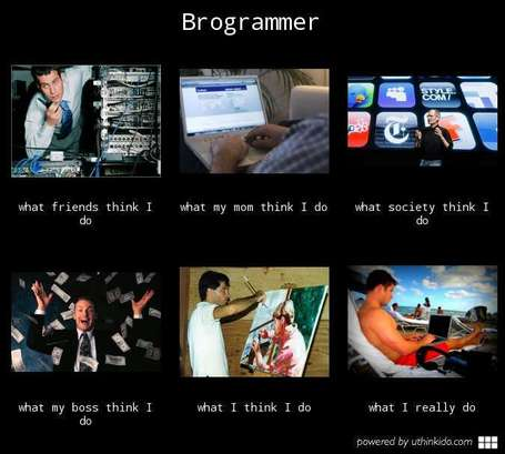Brogrammer | What I really do | Scoop.it