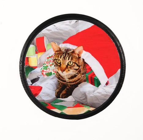 Cat Christmas Wall Art Cat In A Sack | Deborah Julian Art | Christmas Cat Ornaments and Cards | Scoop.it