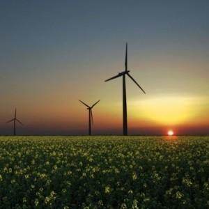 Biomasse, éolien, solaire : le boom des énergies renouvelables | Le groupe EDF | Scoop.it
