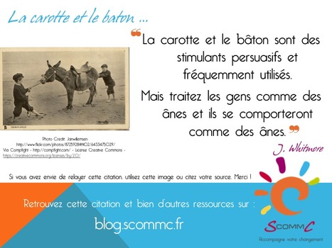 S Comm C, le blog, la carotte et le bâton | Citations | Scoop.it