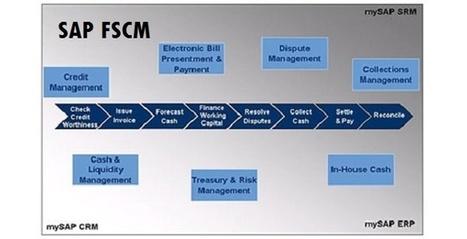 SAP FSCM Online Training - An Emerging Functionality | Microsoft Dynamics | SAP | Oracle | ERP online training | Scoop.it