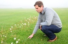 Guidelines for organic and reduced-risk lawn care | Gardening Life | Scoop.it