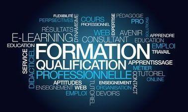 transformation digitale, les salariés en mal de formation   Orange Business Services   Recrutement et RH 2.0 l'Information   Scoop.it