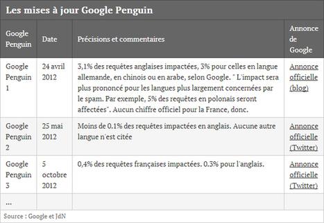 Google Pingouin 2.0 prévu pour les semaines à venir - SEO - Polynet, le blog | Curation SEO & SEA | Scoop.it