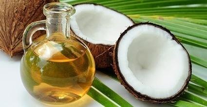Manfaat Minyak Kelapa Untuk Rambut Indah   Aku Sehatku   sehat alami   Scoop.it