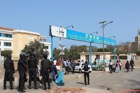 [Sénégal] Université : Plaidoyer pour une privatisation généralisée ! | Higher Education and academic research | Scoop.it