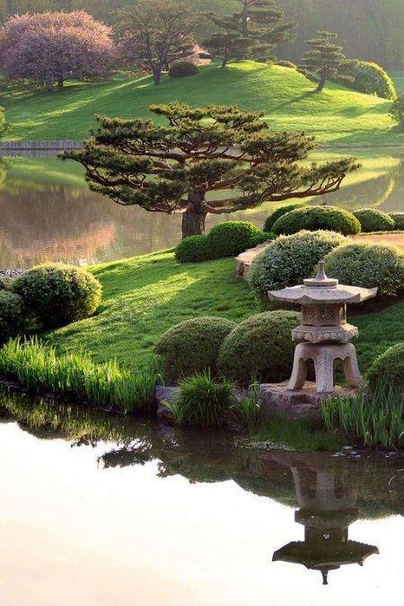 Lovely View | A Love of Japanese Gardens | Scoop.it
