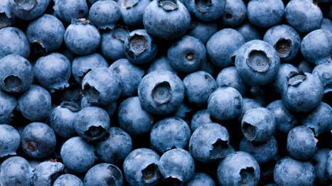 Berries may enhance motor performance and improve cognition, says study | Erba Volant - Applied Plant Science | Scoop.it