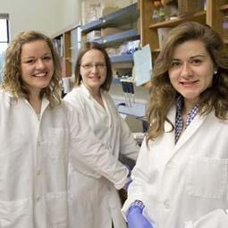 Biology Students Study Stomach Bacteria - UMM News, Sports & Events   Research Capacity-Building in Africa   Scoop.it