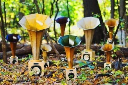 Sonic Arboretum - Andrew Bird and Ian Schnellar | DESARTSONNANTS - CRÉATION SONORE ET ENVIRONNEMENT - ENVIRONMENTAL SOUND ART - PAYSAGES ET ECOLOGIE SONORE | Scoop.it