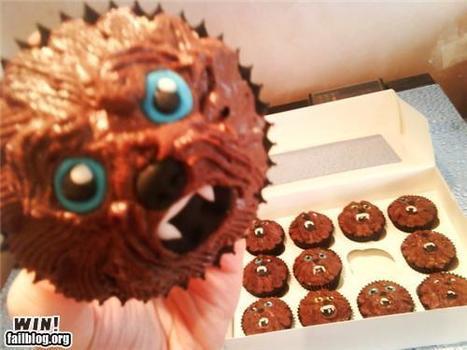 Chewie Cupcakes WIN | Win | Scoop.it