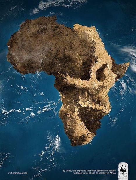 WWF 2025 Africa | CULTURE PUB WORLD | Scoop.it