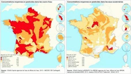 La Charente, le fleuve le plus pollué de France par les pesticides | Toxique, soyons vigilant ! | Scoop.it