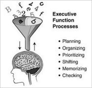 Strategies for Success | Executive Functioning | Self-regulation | Scoop.it