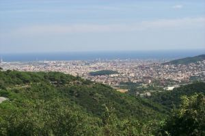 Featured project: Can we save Collserola NationalPark? | #SciFund | Scoop.it