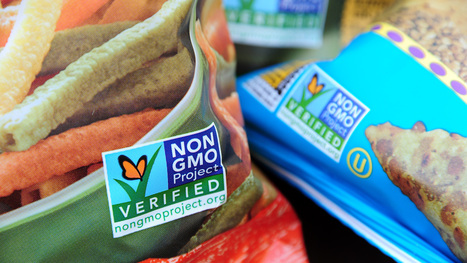 Food Industry Braces for Vermont's GMO Labeling Law - Bloomberg | GMOs: The Untold Story | Scoop.it