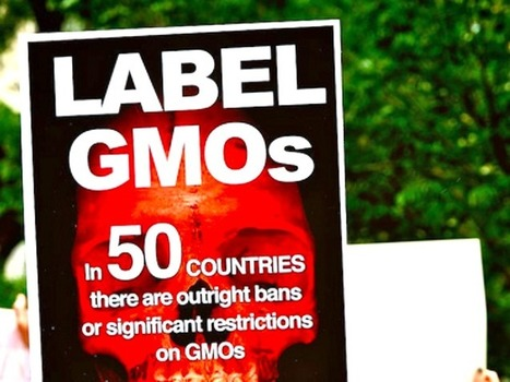Big Food Found Guilty in Multimillion Dollar Cover Up in GMO Labeling Fight | Ethics? Rules? Cheating? | Scoop.it