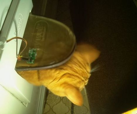 Automatic cat flap monitor with intrusion detection and dissuasion | Raspberry Pi | Scoop.it