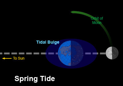 Earth tide measurements provide the 'speed of gravity' which turns out identical to speed of light | Amazing Science | Scoop.it
