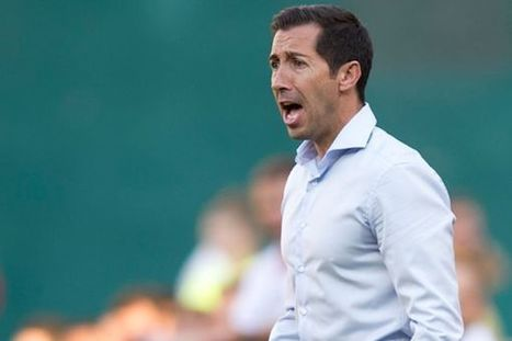 Blaming the Coach in MLS - U.S. National Soccer Players | Player Development | Scoop.it
