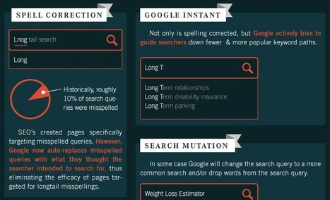 Did Google Kill The Longtail ? | The Big Picture | search engine optimisation | Scoop.it