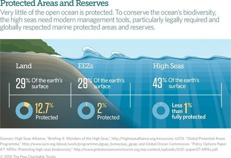 U.N. Meeting Could Lead to Action on High Seas Conservation | Fish Habitat | Scoop.it