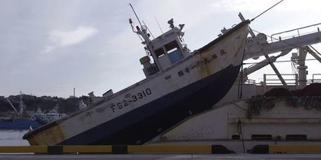 Japon: le blues des pêcheurs de Fukushima, cinq ans après la catastrophe   Zones humides - Ramsar - Océans   Scoop.it