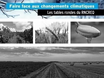 Acériculture et viticulture face aux changements climatiques : menaces ou opportunités ? | Images et infos du monde viticole | Scoop.it