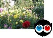 Jardin solidaire - Ulule | Parisian'East, la communauté urbaine des amoureux de l'Est Parisien. | Scoop.it