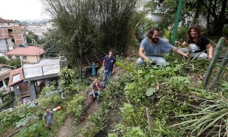 Cultivo urbano ganha adeptos entre jovens, que farão mutirão na Lapa | Cibereducação | Scoop.it