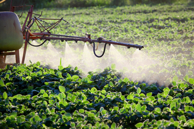Harvard study links industrial chemicals, pesticides to growing brain disorders in children | Environment & Sustainability | Scoop.it