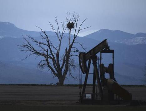 "Colorado faces oil boom ""death sentence"" for soil, eyes microbe fix 