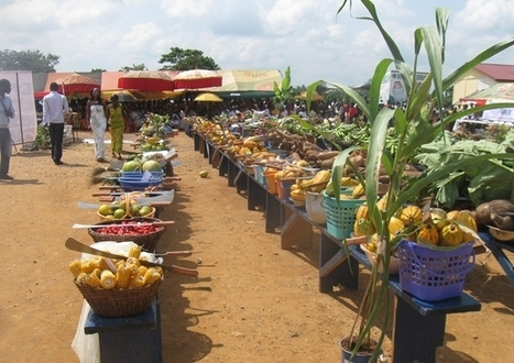 Ghana News - Japanese government approves grant for Ghanaian farmers | NEPAD CAADP Compendium on Agriculture in Africa | Scoop.it